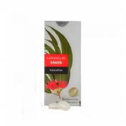 Sawes caramelos blister sin azucar (eucalipto blister 22 g)